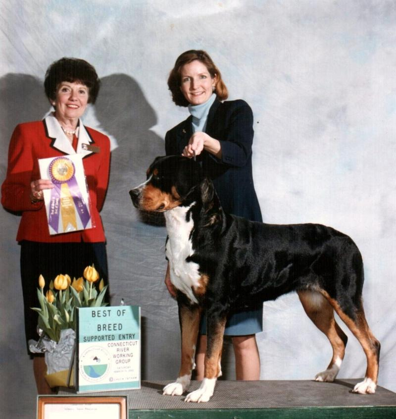 Laverne Best of Breed CT River Working Grp show